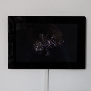 the glamouring baby, 2012, HD Video (loop), 10.1 Colour TFT LED (26,65 cm), Limited Edition of 300