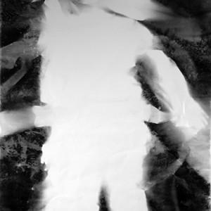 """Jump II / into the void no.1"", 2011, ca. 230x127cm, BW - Photogram, unique"