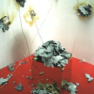 """Phoenix No.1"", 2003, 170x110cm, c-print, 2+1AP"