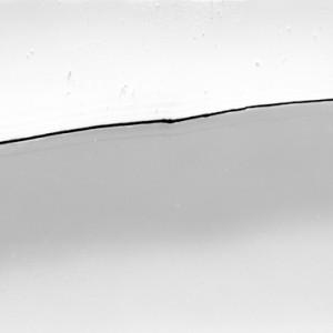 """""""FCUT no.1"""", 2013, ca. 70x200cm, photogram on colorfilm/lambdaprint, 2+1 AP"""