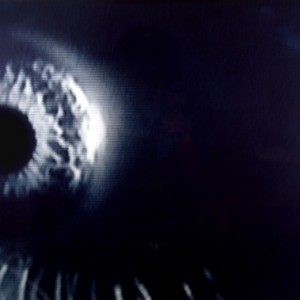 o.T., 1996, ca.45x60cm, Cyanotypie, 1+1AP