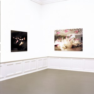 "2004 ""Blight"" Diplompräsentation im badischen Kunstverein Karlsruhe (picture right ""In Embryo no.1"", picture right ""Bomb no.1)"
