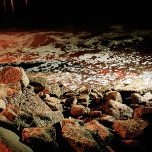 """red rhin"", 2003, 100x120cm, C-Print, 2+1AP"