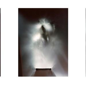 """KNGTLY IV trpitych no.2 (Knight Memorial)″, 2015, je ca. 120x90cm, photogram on colorfilm/C-Print analog, 2+1 AP"