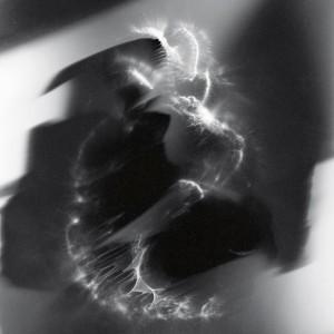 """The Chamois no.4″, 2015, ca. 120x90cm, photogram on colorfilm/C-Print analog, 2+1 AP"