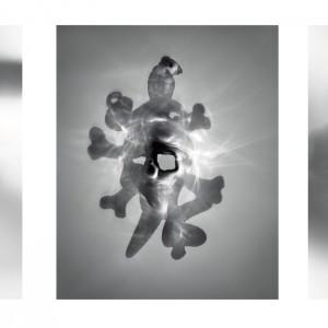 """G.O.D. (Glory or Death) triptych no.2″, 2016, je ca. 120x90cm, photogram on colorfilm/C-Print analog, 2+1 AP"