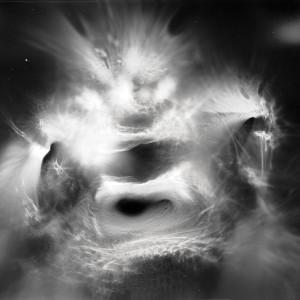 """Magic Lamp no.1″, 2017, ca. 100x130cm, photogram on colorfilm/C-Print analog, 2+1 AP"